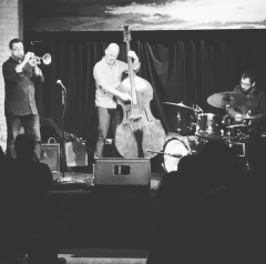 Lesser Lakes Trio at The Hook & Ladder, Minneapolis, MN 2017